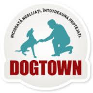 1 Dogtown